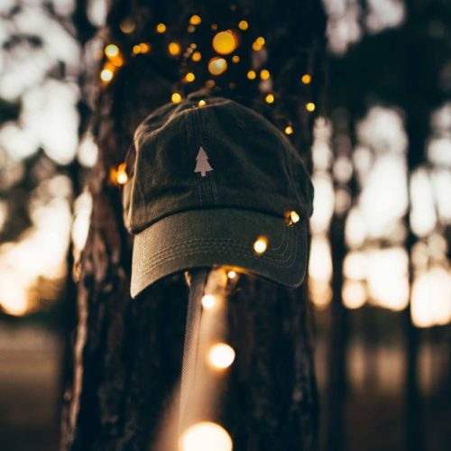 THE PARKS PINE TREE DAD HAT